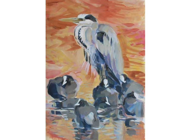 Derry-Nick-Heron-and-Coots.jpg