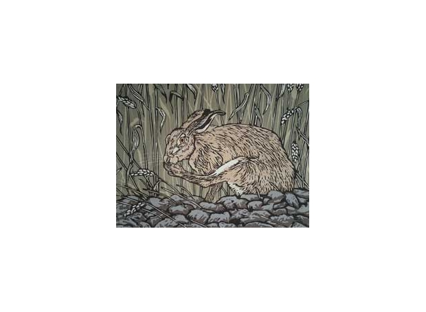 Hatton-John-Brown-hare.jpg