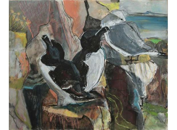 Jones-Kittie-Seabird-ledges,-St-Abb's-Head.jpg