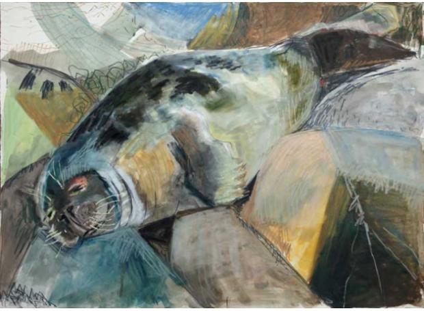 Jones-Kittie-Sleeping-Seal.jpg