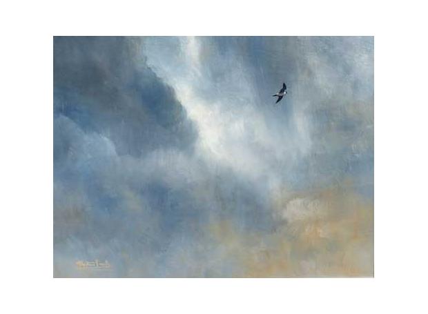 Proud-Alastair-Peregrine-and-stormy-skies.jpg