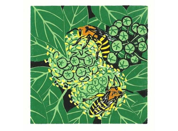 Bartlett-Vanna-Ivy-bees.jpg