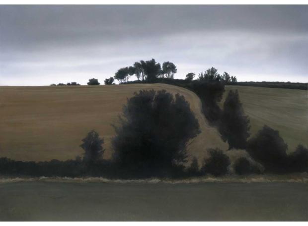 Watts-Terry-Hill-in-early-light.jpg