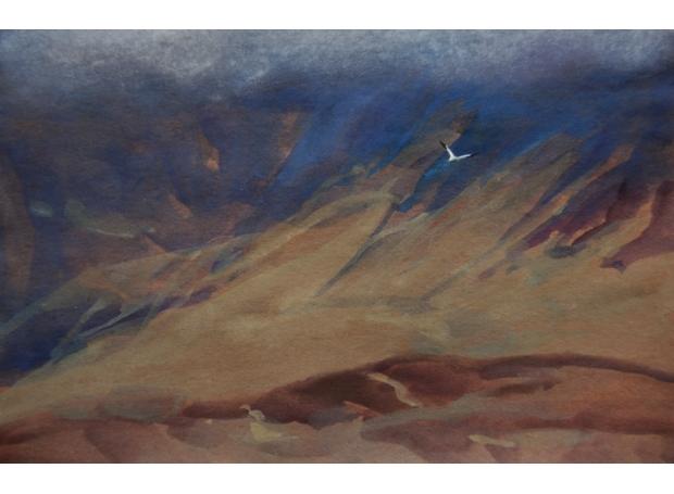 Clucas-Fiona-Gannet Circling Cuillin Ridge.jpg