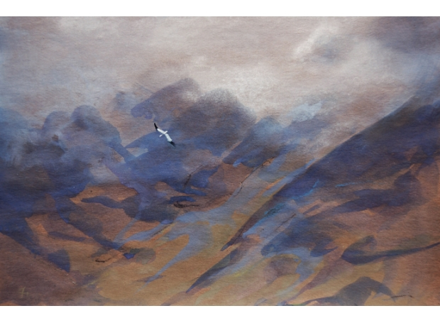 Clucas-Fiona-Gannet Diving Cuillin Ridge.jpg