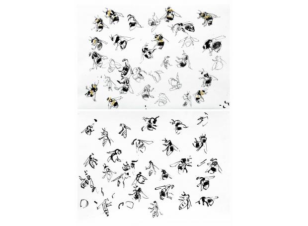 Pollard-Nik-Bee-studies.jpg
