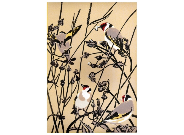Max Angus Goldfinches and Groundsel