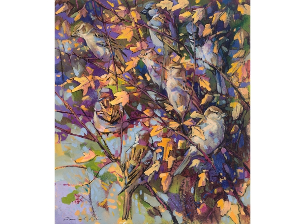 Daniel Cole SWLA, House Sparrows and Field Maple