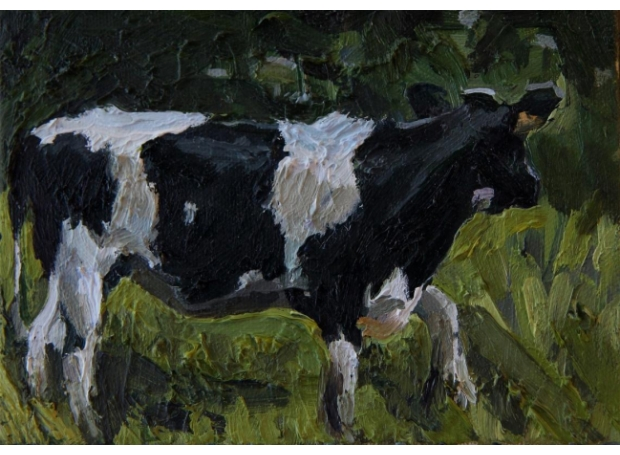 Coleman-Amanda-Patchy-Cow-1.jpg