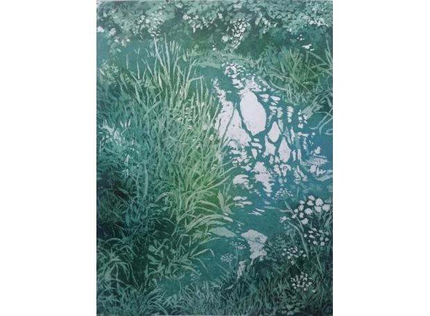 Halsby-Miranda-Purlieu-Stream-to-the-river-parrett-2.jpeg