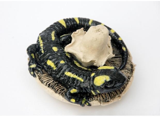 Moger-Jill-Fire-salamander-on-a-mushroom---stonewa-re---5-x-3.5ins---£370---Jill-Moger.jpg