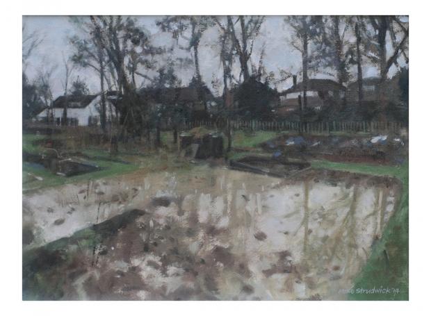 Strudwick-Mike-Cuckoo-Hill-Allotments-in-Flood.jpg