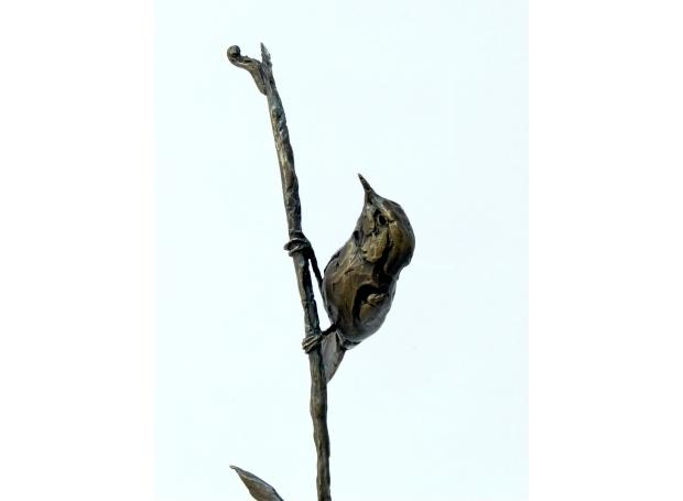 Sutton-Barry-The Elusive Swallowtail.jpg