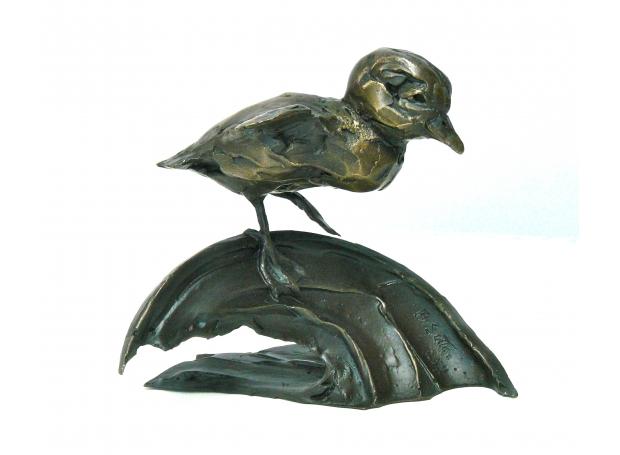 Sutton-Barry-The Tentative Duckling.jpg