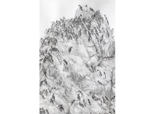 Wallbank-Christopher-Downies Goat (detail).jpg