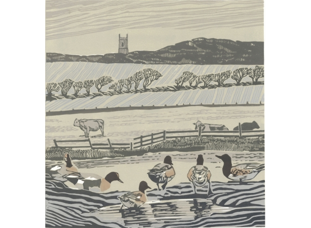 """Salthouse Wigeon"" Linocut Print by Max Angus"