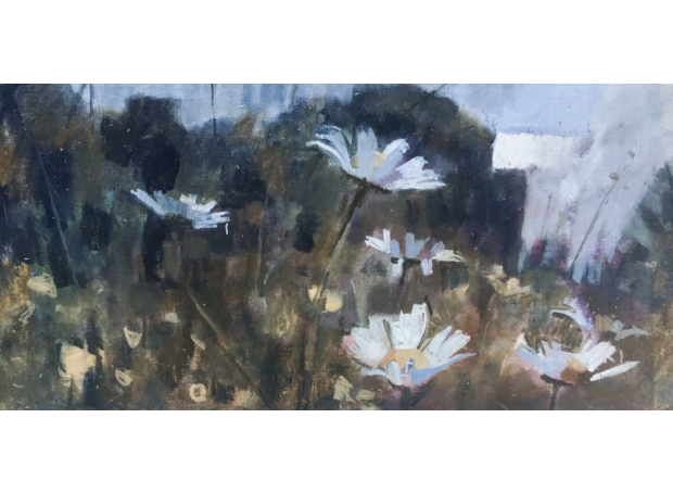 """""""Oxeye Daisies 3"""" Oil on Canvas by James Bland"""