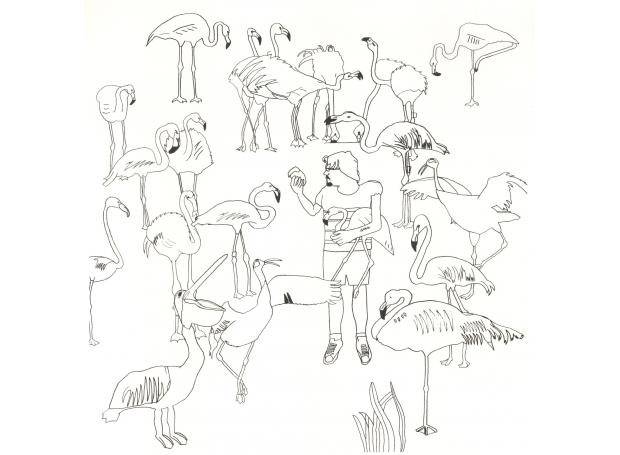 """Flamingo Family"" Screenprint by Jack Haslam"
