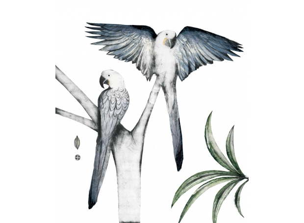 """""""Hyacinth Macaws"""" Hand-painted drypoint engraving by Beatrice Forshall"""