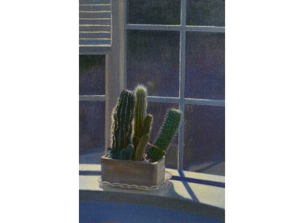"""""""Sunlit Cacti"""" Oil on Linen by Andrew Hitchcock"""