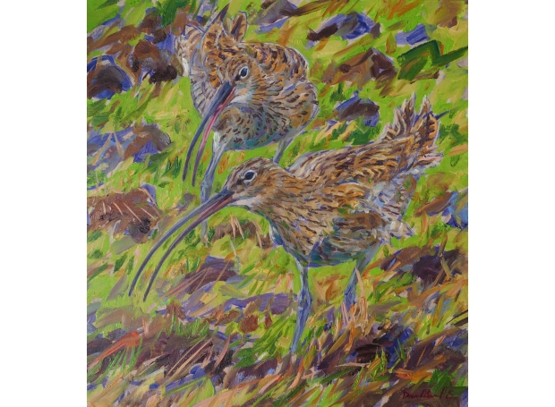 Early Spring Curlews by David Bennett SWLA