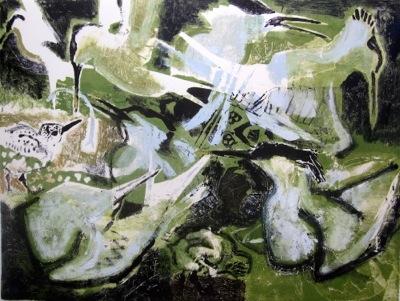 Kim Atkinson SWLA, Sandwich Tern Colony, Cemlyn