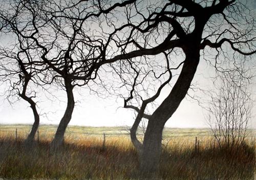 Brammeld-David-Three-Winter-Trees