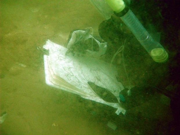 HM Underwater byKR.jpg