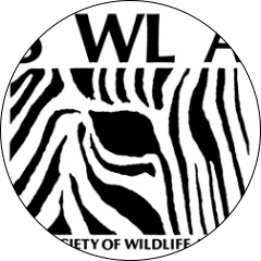 Society of Wildlife Artists Call For Entries Open Art Exhibition