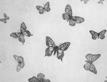 Guy Allen, Butterflies sq.jpg