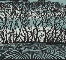 Angus-Max-Lockdown-Trees.jpg