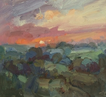 Benson-Tim-Hampstead Heath sunset.jpg