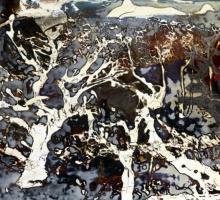 Ed Slater, Nuclear Trees