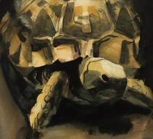 Vctoria Edwards SWLA, Egyptian Tortoise (detail)