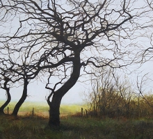 Event-Brammeld-David-Three-Trees-(Looking-towards-the-Cheshire-Plain).jpg