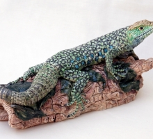 Jill Moger SWLA, Eyed Lizard on a Log
