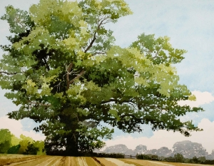 Sidaway-Ian-Summer-Oak-Petworth.jpg