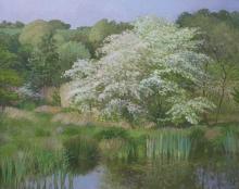 Calvert-Diana-May-Blossom.jpg