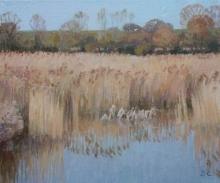 Calvert-Diana-Winter-Reeds-with-Seagulls.jpg