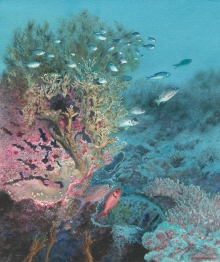 Borello-Wendy-Madagascan Waters.jpg