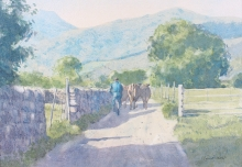 Allbrook_Colin_New pastures Sopena northern Spain.jpg