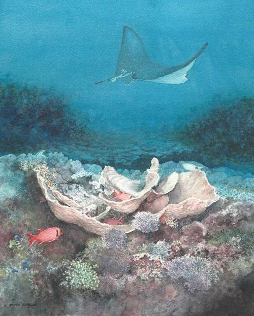 Borello-Wendy-Zanzibar-Corals.jpg