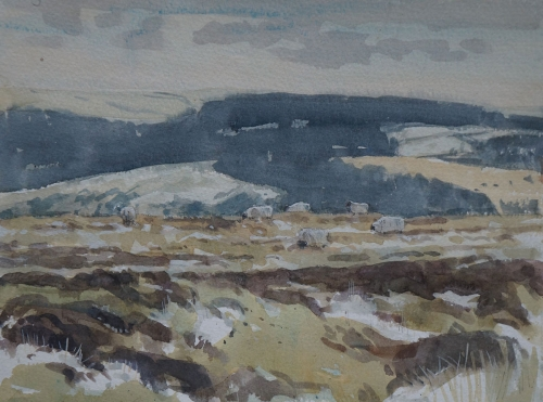 Allbrook-Colin-Winter-on-Dartmoor.jpg
