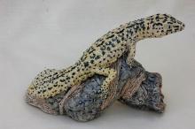 Moger-Jill-Leopard-Gecko.jpg