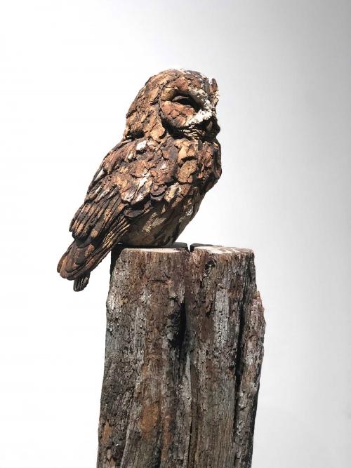 Griffiths-Simon-Tawny-Owl-on-tall-post.jpg