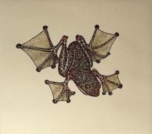 Davies-Mikaela-Fancy Frog.jpg