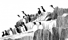 Gillings-Simon-Abstract Auks.jpg