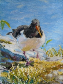 Thorley-Fox-Rebecca-Oystercatcher Nest Swap.jpg