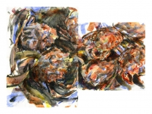 Wallbank-Chris-Spider Crabs.jpg