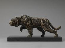 Field-Knox-Stalking Tigre.jpg